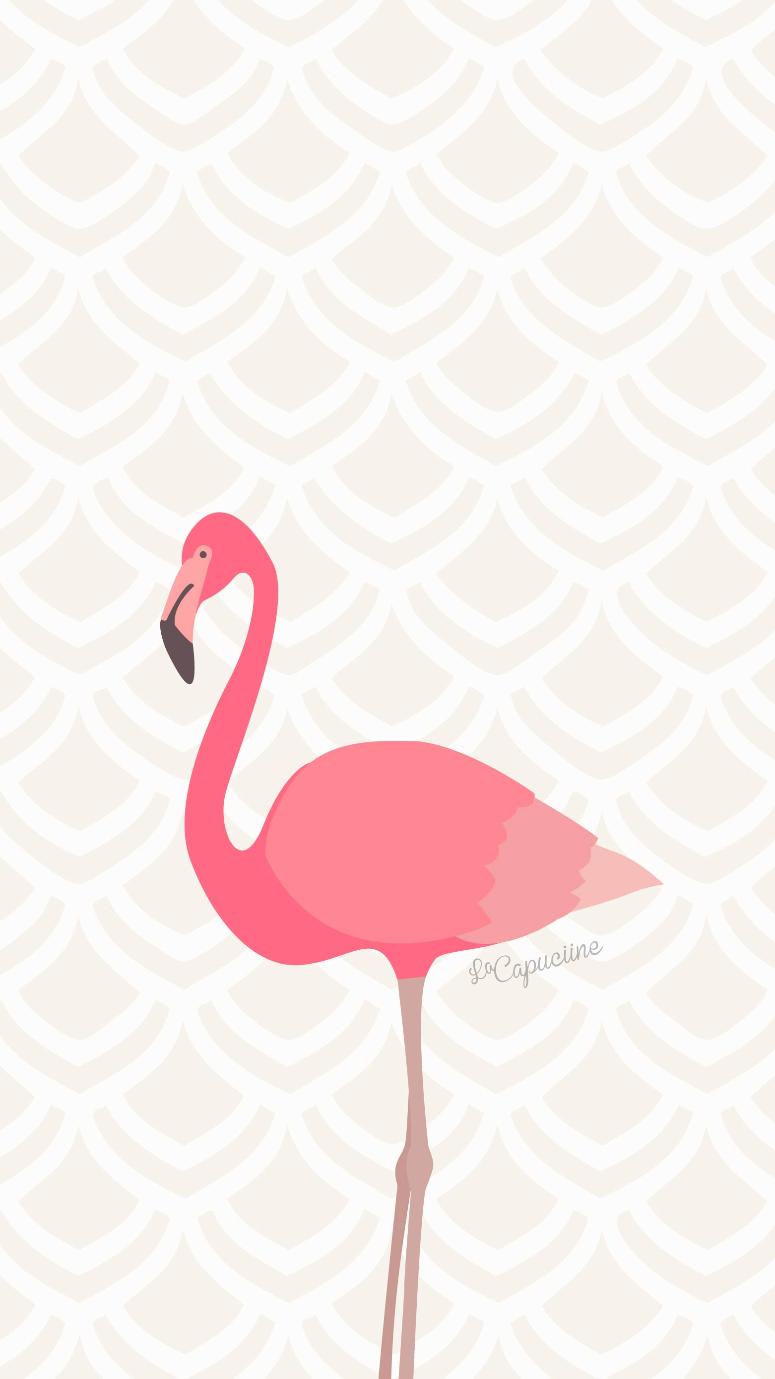 Fond d cran flamant rose la capuciine for Fond ecran rose
