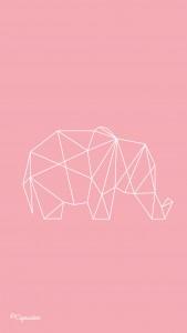 iphone5-elephant-lacapuciine-1