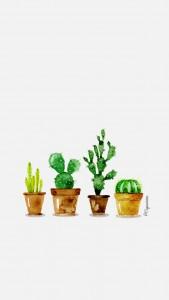iphone5-lacapuciine-cactus