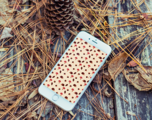 fond-decran-iphone-lacapuciine-automne