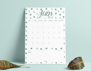 calendrier-juin2017-lacapuciine